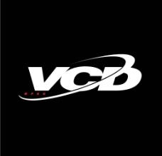 vcd标式图标图片