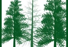 高清树笔刷刷图片