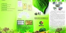 蔬菜四折页图片
