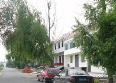 新农村 图片