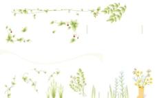 花纹花边图片