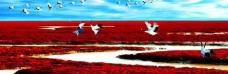 盘锦大洼红海滩图片