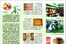 茶文化宣传单图片