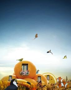 水果餐厅橙图片