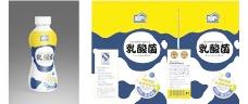 乳酸菌牛奶包装(展开图)图片