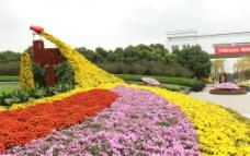 菊花流图片