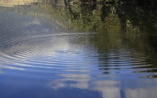 水波荡漾图片