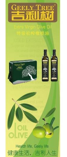 橄榄油x展架图片