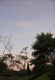 早上 月亮图片
