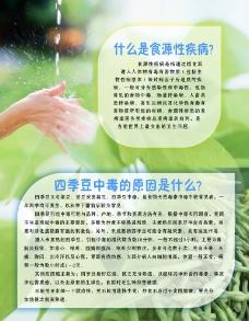 四季豆食用安全图片
