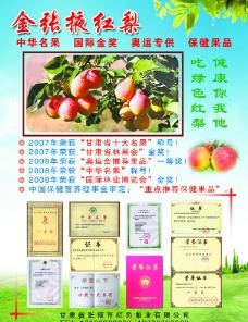 金张掖雪山红梨宣传图片