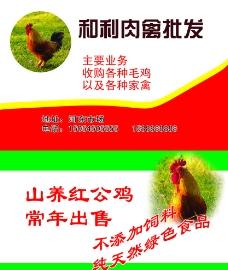 肉禽名片图片