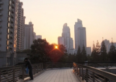 夕阳红图片