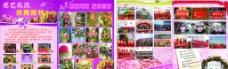 花店宣传图片
