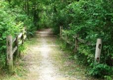 自然小路风光风景图片