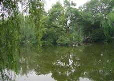 长桥公园 清幽图片