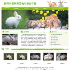 畜利源养兔专业合作社网站图片