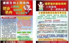 上田猪肉宣传单图片