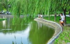 宝安公园图片
