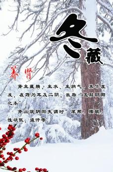 冬藏养肾图片