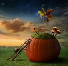 南瓜屋童话风格背景图片