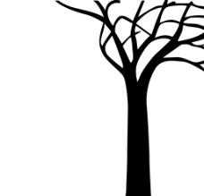 黑白树无框画图片